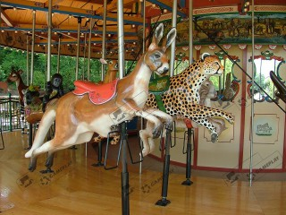 16 Seats Animal World Carousel